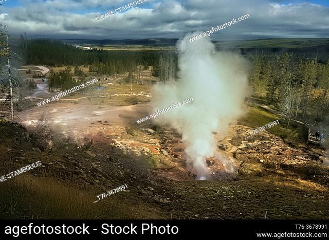 Steaming geysers, Norris Geyser Basin, Yellowstone National Park, Wyoming, USA