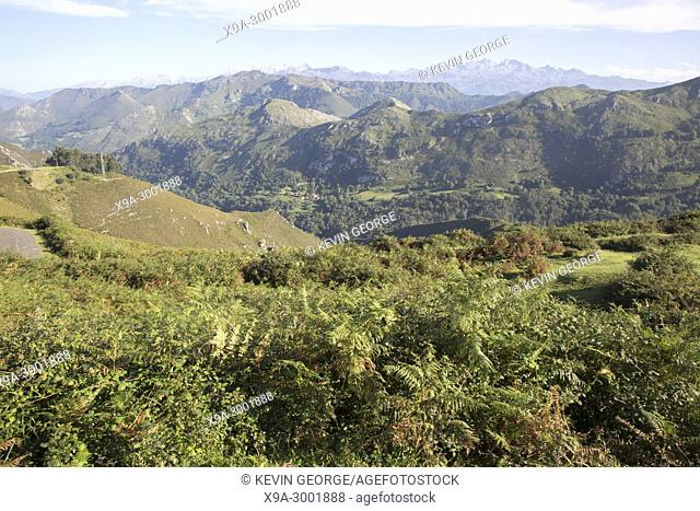 Picos de Europa Mountain from Alto del Torno, Austurias; Spain