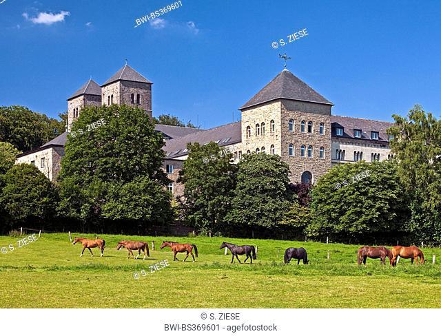 domestic horse (Equus przewalskii f. caballus), horses grazing in front of the Benedictine monastery Gerleve, Germany, North Rhine-Westphalia, Billerbeck
