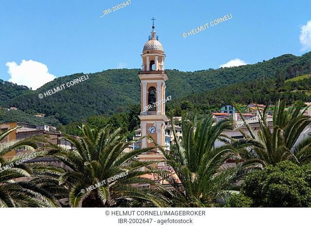 Palms and bell tower of the church of Santa Croce, 18th century, built on the foundations of the church from 1100, old town, Moneglia, Genoa Province, Liguria