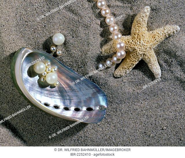 Saltwater pearls, a shell and a starfish