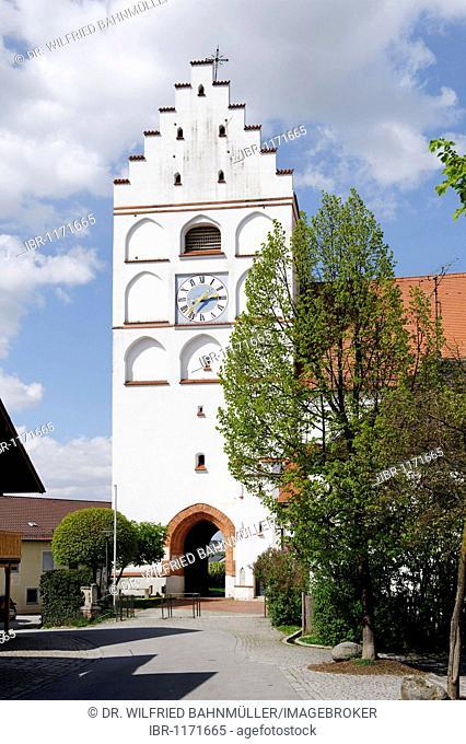 St. Michael's parish church, Reisbach, Lower Bavaria, Bavaria, Germany, Europe