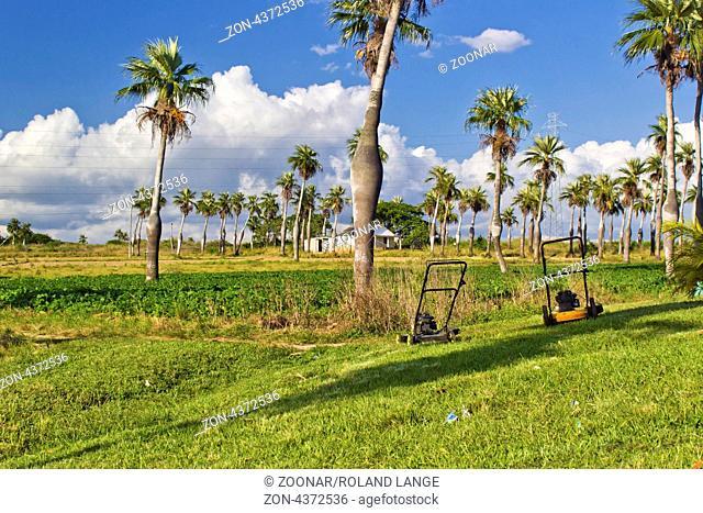 Picnic area between Havana and Pinar del Rio