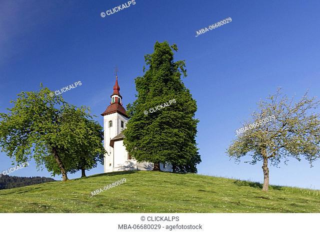 Europe, Slovenia. Church of St. Thomas / Sveti Toma? in the municipality of Skofja Loka