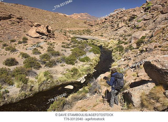 Hiking along the Rio Blanco thermal river near El Tatio Geyser, San Pedro de Atacama, Chile