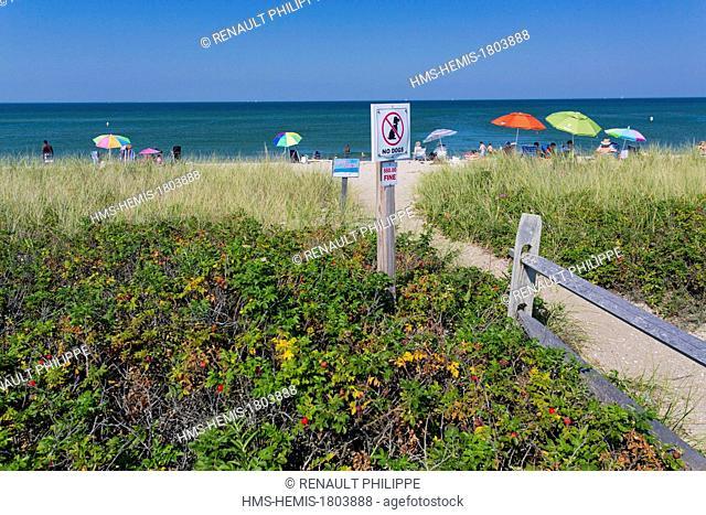 United States, Massachusetts, Cape Cod, Martha's Vineyard island, Oak Bluffs State Beach