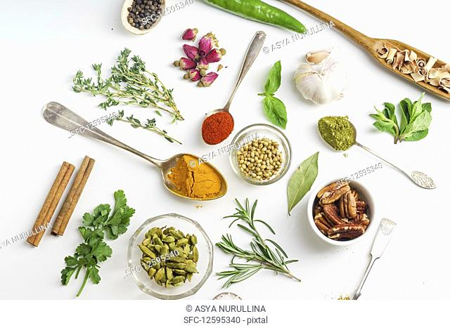 Fresh herbs and dried colorful spices in spoons and bowls arranged geometrically