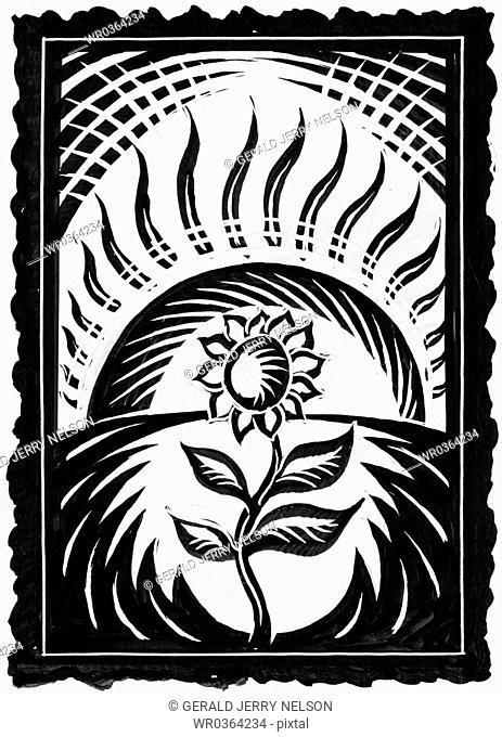 sunflower and sun