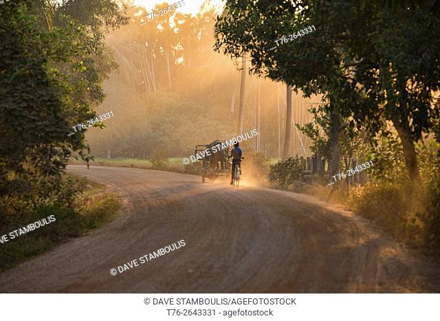 Riding home in the dust at sunset near Siem Reap, Cambodia