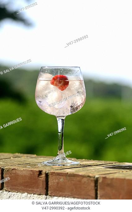 A glass cup with a gin and tonic cocktail with ice and strawberries, on a background of nature and mountains relax