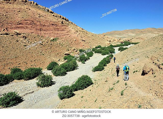Hikers on the High Atlas. Morocco