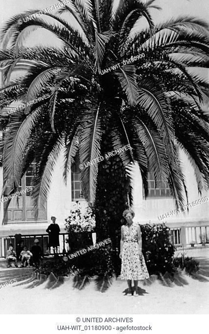 Eine Frau steht unter einer Palme in Lloret de Mar