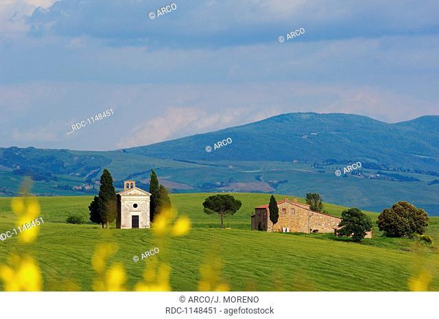 Val d'Orcia, Orcia Valley, UNESCO World Heritage Site, Cappella di Vitaleta, Vitaleta Chapel, Pienza, Siena Province, Tuscany, Italy, Europe