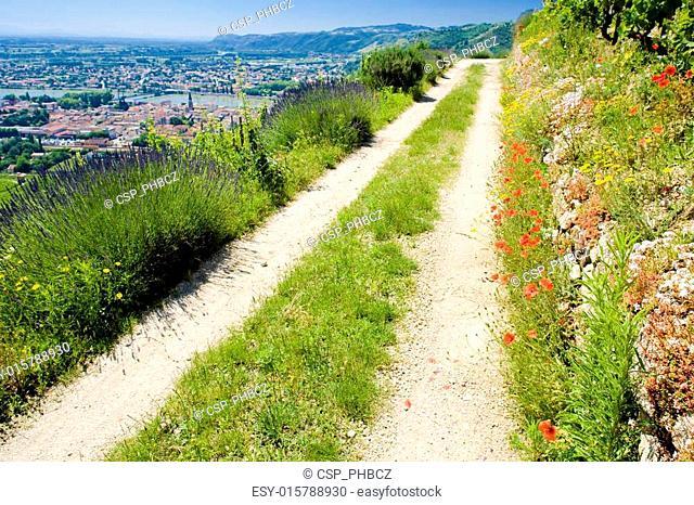 Tain-L�Hermitage, Rh�ne-Alpes, France