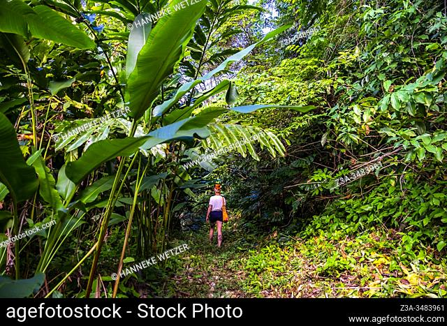 Girl walking in the tropical nature of the Republic of Cuba, Caribbean, Central America