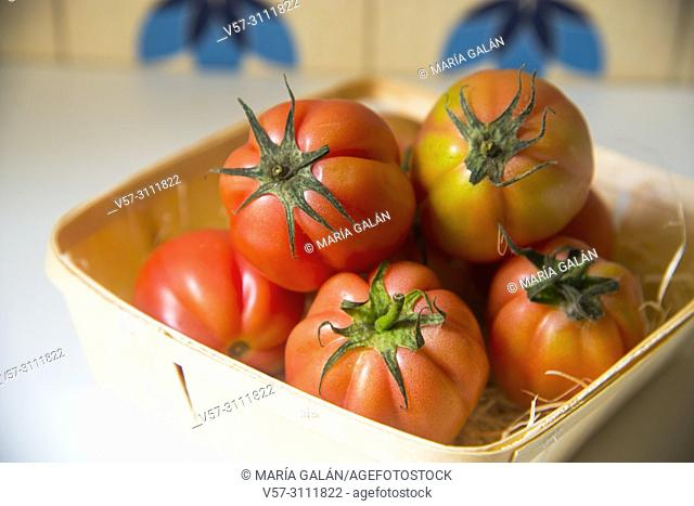 Raf tomatoes in a basket. Still life