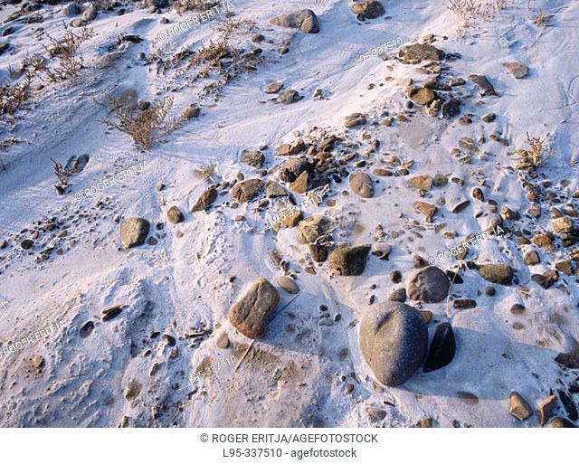 Clay creviced soils in continental desert. Bardenas reales de Navarra. Spain