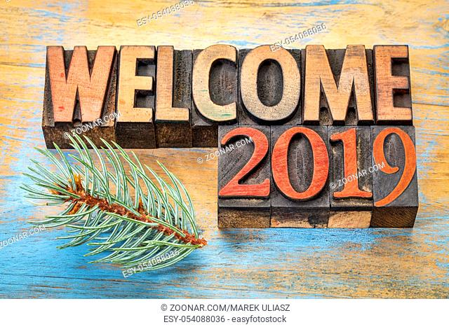welcome 2019 - word abstract in vintage letterpress wood type blocks stained by color inks