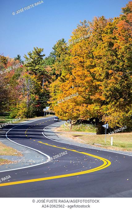 USA , Massachusetts, Berkshire District, Road