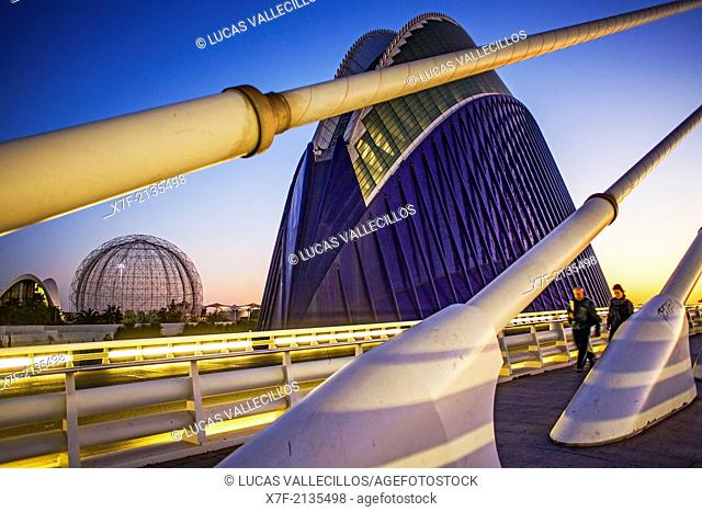 El Pont de l'Assut de l'Or and L'Agora, in City of Arts and Sciences. Valencia, Spain