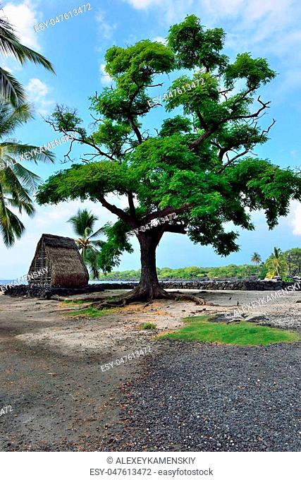 a hut on the beach at Pu'uhonua o Honaunau known as the Place of Refuge on the Big Island of Hawaii