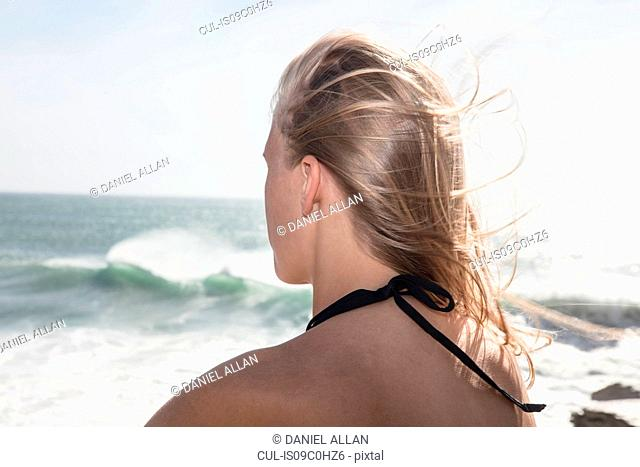 Young female surfer with flyaway long blond hair looking out at ocean waves, rear view, Cape Town, Western Cape, South Africa