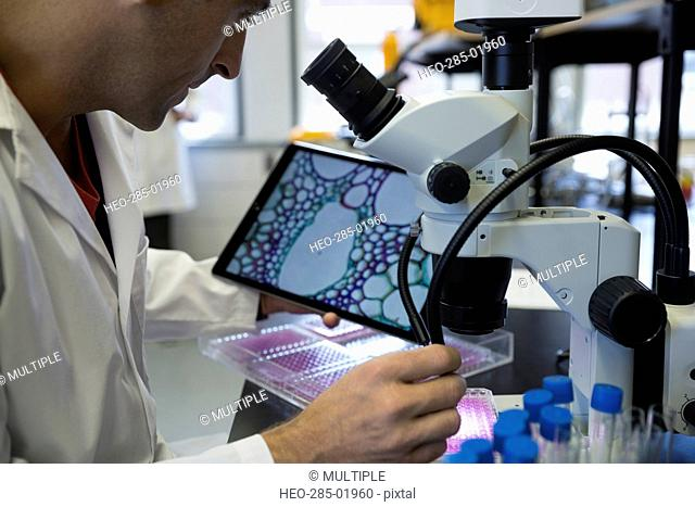 Scientist using microscope camera and digital tablet in laboratory