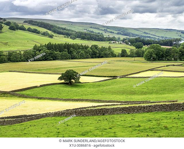 View over the Nidderdale AONB from Wath Road near Pateley Bridge North Yorkshire England