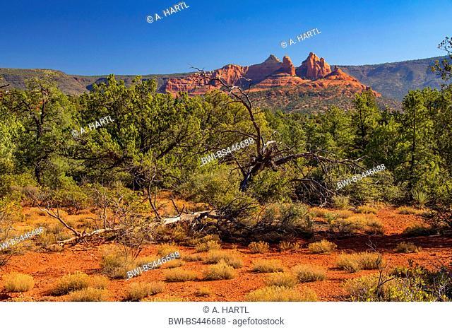 red rocks northwest of Sedona, USA, Arizona, Mogollon Rim, Sedona