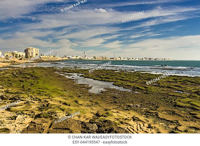 Moss covered rocks off the shores of Bay of Cadiz