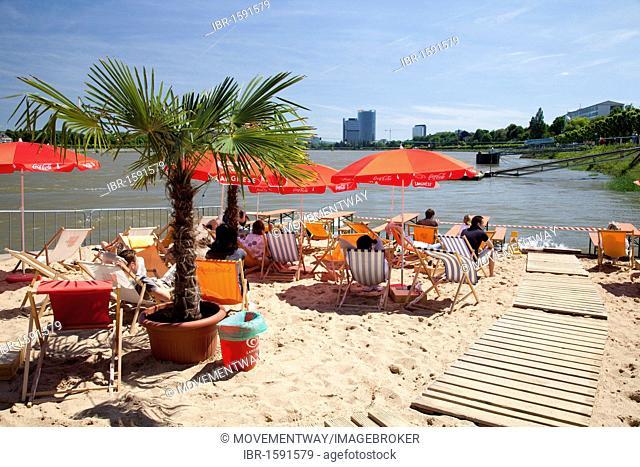 Beer garden, restaurant, sandy beach, palm trees, deckchairs, bank of the Rhine River, Bonn, Rhineland region, North Rhine-Westphalia, Germany, Europe