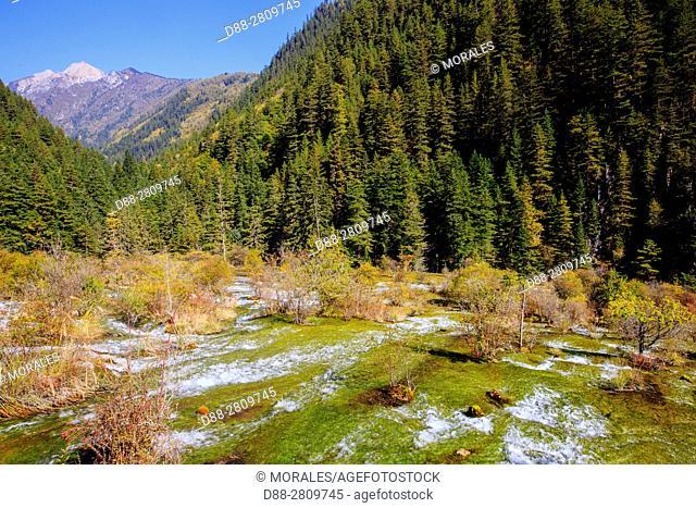 Asia, China, Sichuan province, UNESCO World Heritage Site, Jiuzhaigou National Park, Waterfall, Pearl Shoal Falls