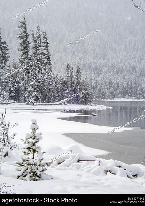 View of the shoreline with the snow-covered Emerald Island in the background at Lake Wenatchee State Park in eastern Washington State, USA