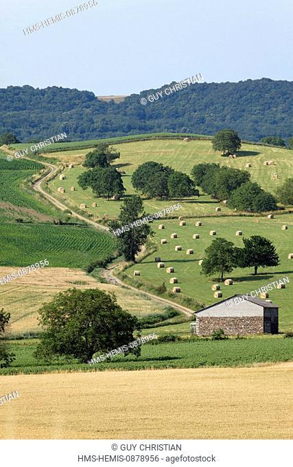 France, Puy de Dome, Parc Naturel Regional Livradois Forez (Natural regional park of Livradois Forez), Billom, agricultural landscape
