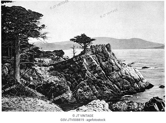 nature, ocean, Point Midway, Monterey, historical