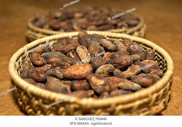Cocoa beans in baskets
