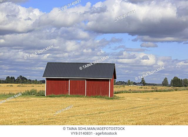Red wooden barn in stubble wheat field in early autumn with blue sky and clouds background in the open agricultural landscape of Ostrobothnia, Finland