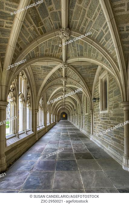 Princeton University Hallway III - A view to a perfect example of Collegiate Gothic architecture style. Princeton University is a private Ivy League research...