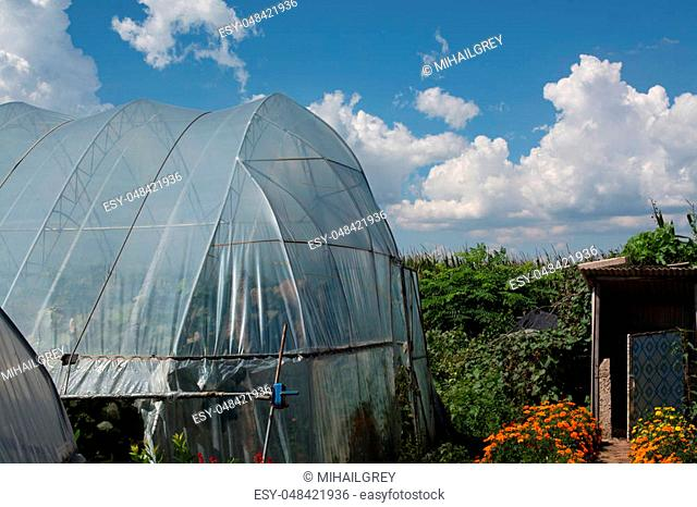 Exterior of plastic film greenhouse. Private farm with barn and different greenery