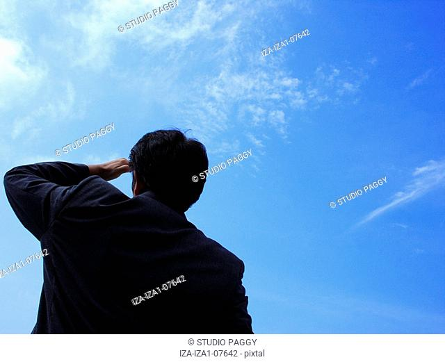 Rear view of a businessman looking in the sky