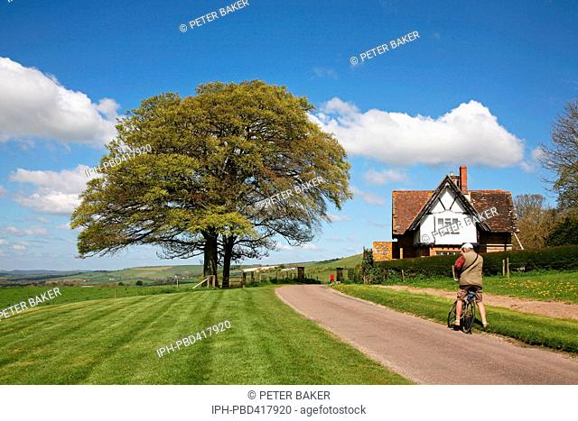 A cyclist stops to photograph a fine tree in it's springtime colours at Little Bredy, a picturesque village near Bridport