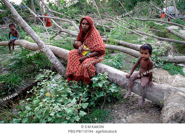 A family sits on a tree aftermath of cyclone SIDR Many houses were destroyed by tidal wave on the night of 15th November 2007 as cyclone SIDR smashes the...