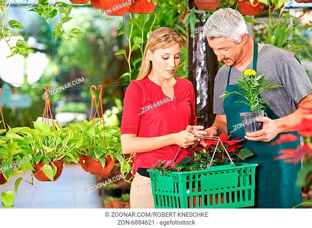 Frau mit Einkaufskorb kauft Blumen (Tagetes) in einer Gärtnerei