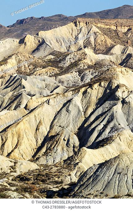 Bare ridges of eroded sandstone in the badlands of the Tabernas Desert, Europe's only true desert. Almeria province, Andalusia, Spain
