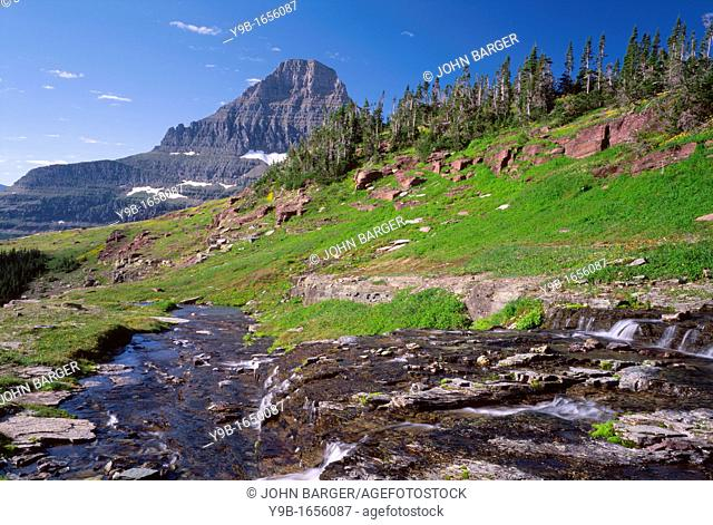 Logan Creek descends sedimentary layers as Reynolds Mountain rises in the distance, Hanging Gardens area above Logan Pass, Glacier National Park, Montana, USA