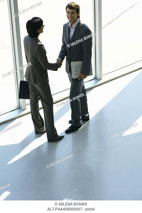 Business associates shaking hands, full length, high angle view