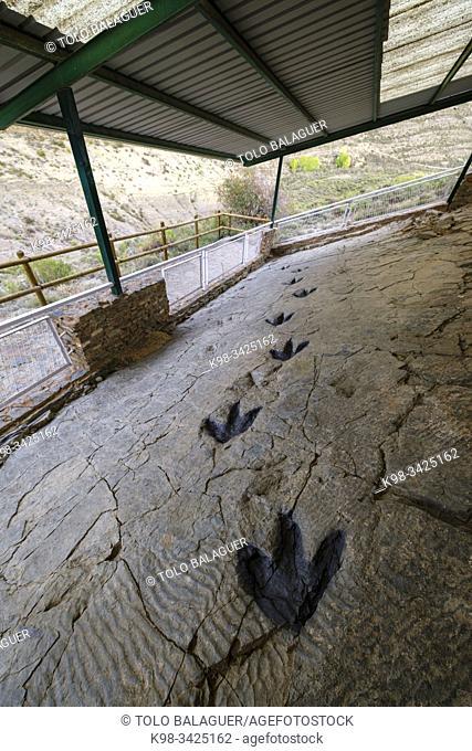 huellas de dinosaurio, yacimiento de Los Cayos, Cornago, La Rioja , Spain, Europe
