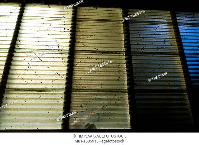 Backlit plastic panels on workshop  Sidney, British Columbia, Canada