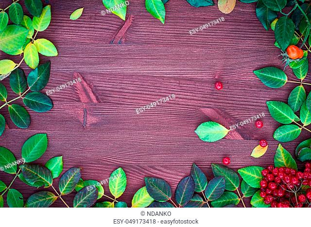 Wooden background with autumn leaves laid out on the perimeter, the empty space in the middle