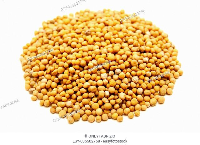 White mustard seeds on a white background